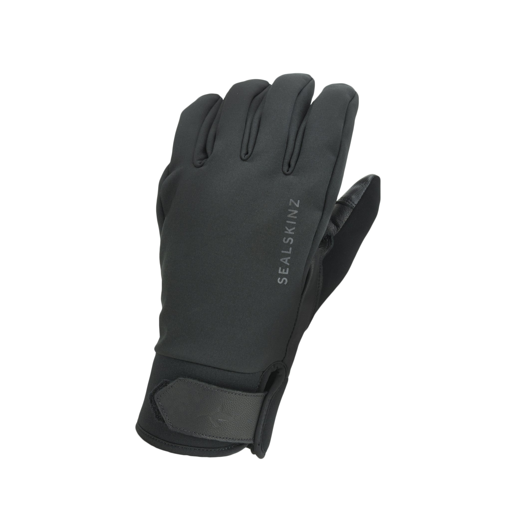 Sealskinz Wp All Weather Insulated Glove Black